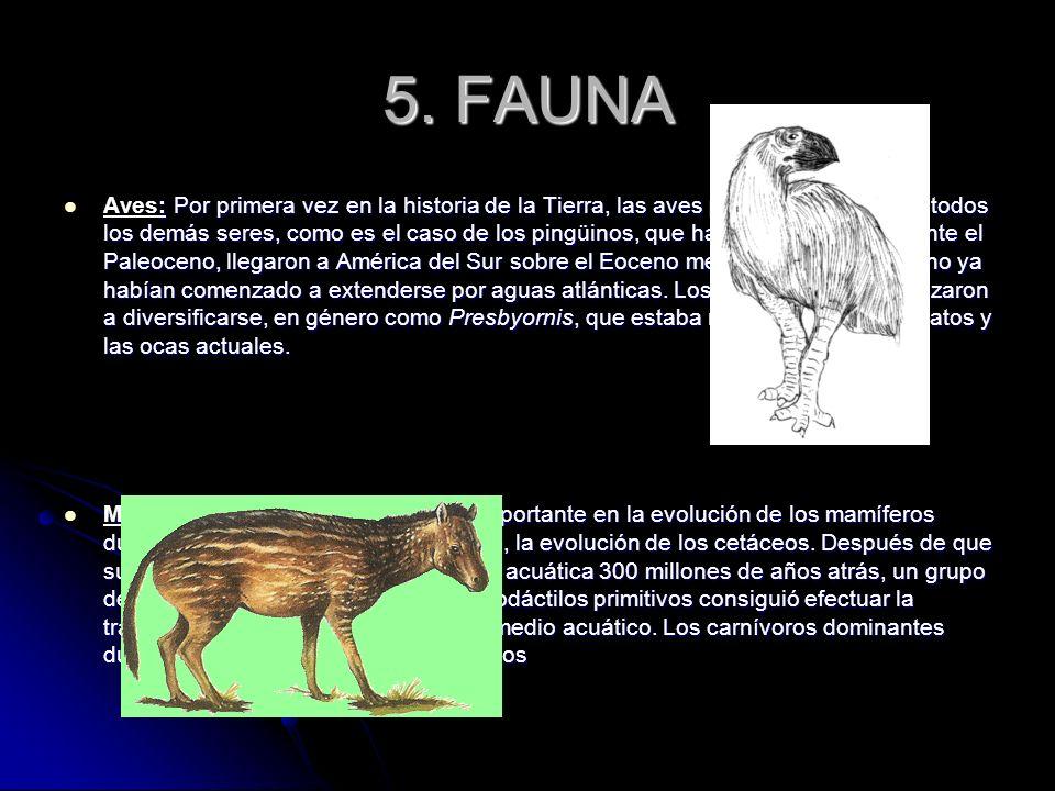 5. FAUNA