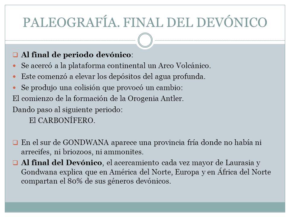 PALEOGRAFÍA. FINAL DEL DEVÓNICO
