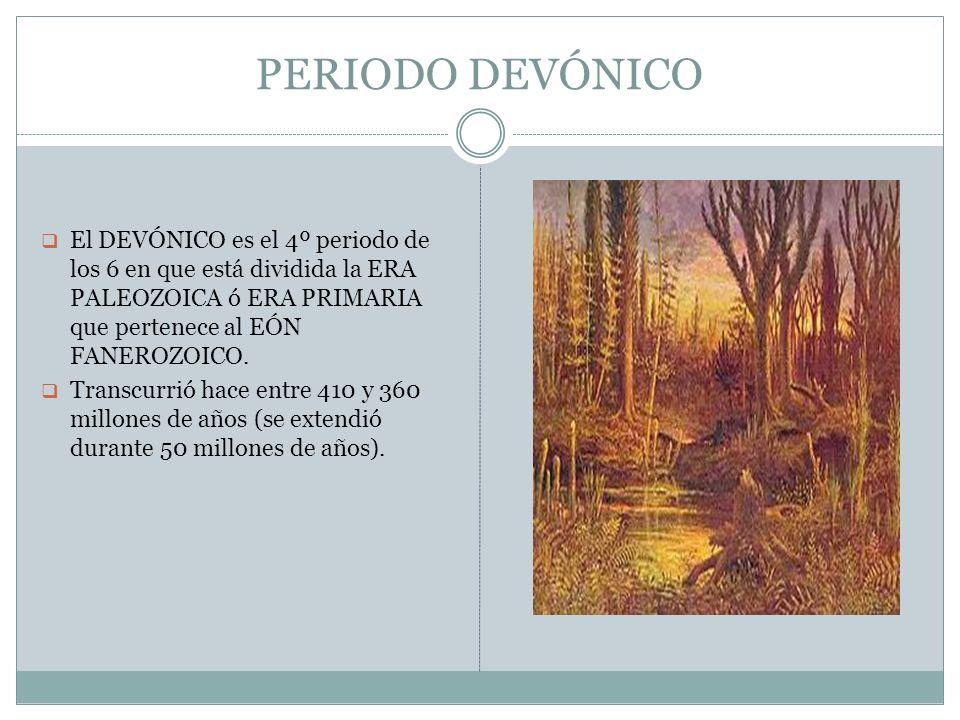 PERIODO DEVÓNICOEl DEVÓNICO es el 4º periodo de los 6 en que está dividida la ERA PALEOZOICA ó ERA PRIMARIA que pertenece al EÓN FANEROZOICO.