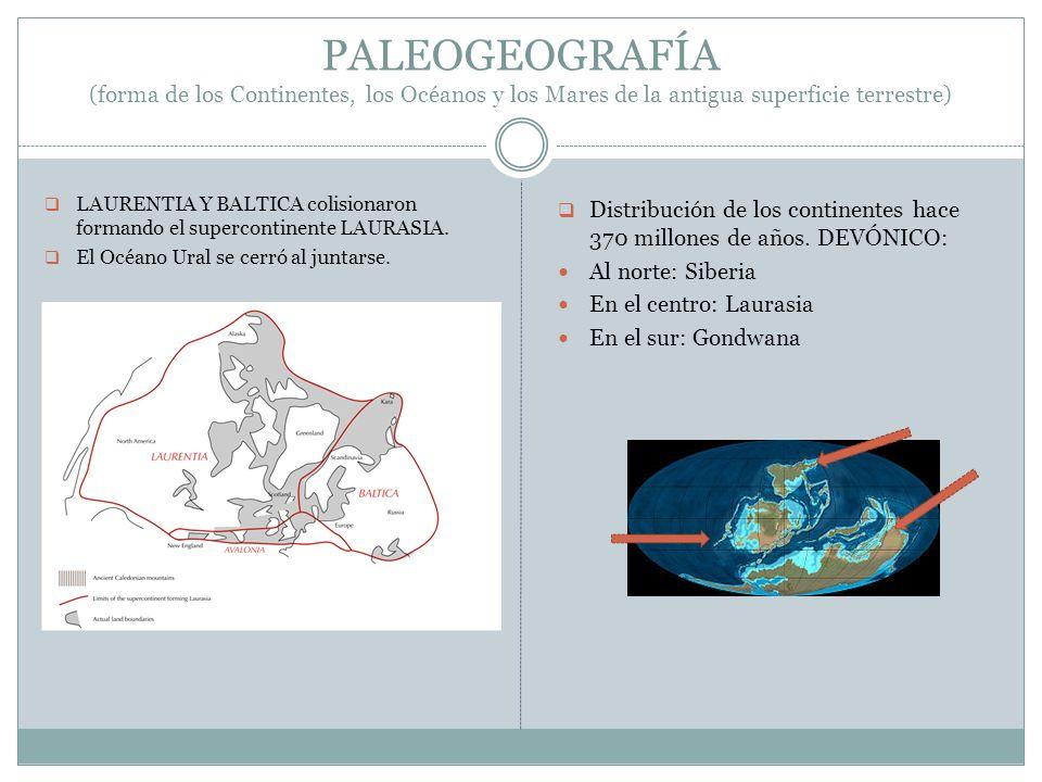 PALEOGEOGRAFÍA (forma de los Continentes, los Océanos y los Mares de la antigua superficie terrestre)
