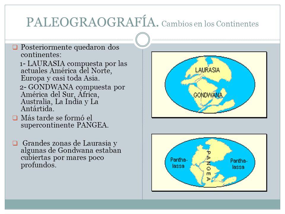 PALEOGRAOGRAFÍA. Cambios en los Continentes