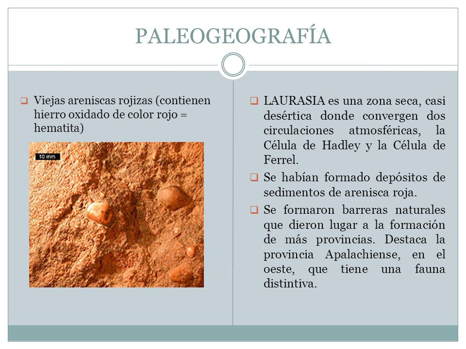 PALEOGEOGRAFÍAViejas areniscas rojizas (contienen hierro oxidado de color rojo = hematita)