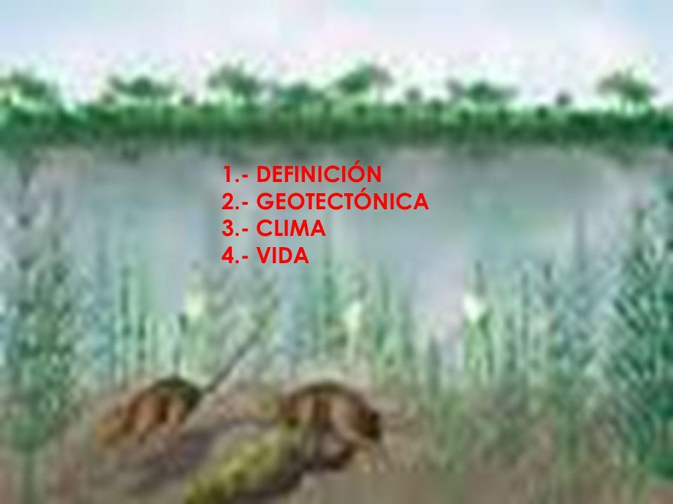1.- DEFINICIÓN 2.- GEOTECTÓNICA 3.- CLIMA 4.- VIDA