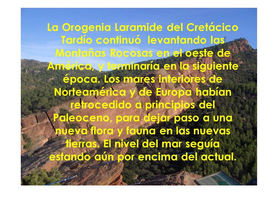 La Orogenia Laramide del Cretácico Tardío continuó levantando las Montañas Rocosas en el oeste de América, y terminaría en la siguiente época.