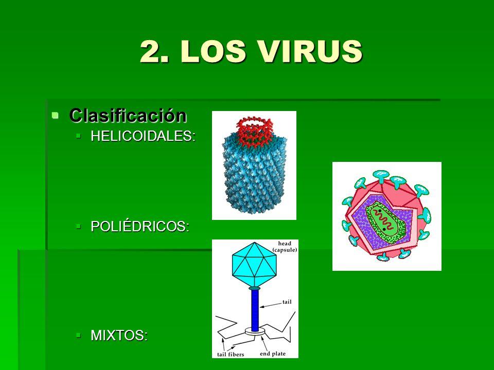 2. LOS VIRUS Clasificación HELICOIDALES: POLIÉDRICOS: MIXTOS: