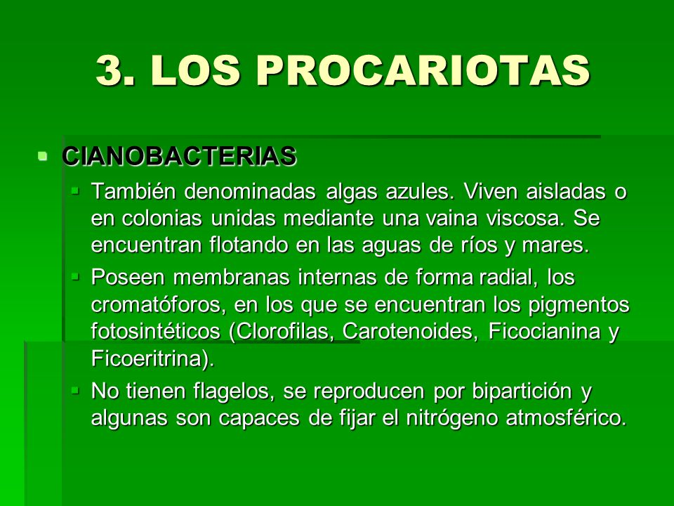 3. LOS PROCARIOTAS CIANOBACTERIAS