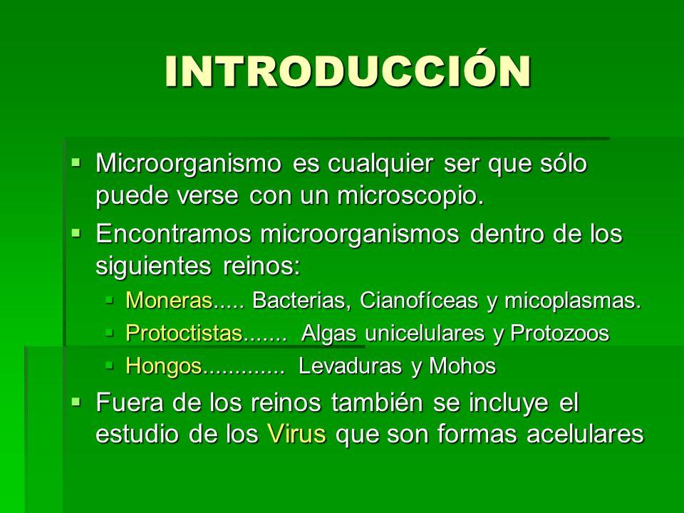 INTRODUCCIÓN Microorganismo es cualquier ser que sólo puede verse con un microscopio. Encontramos microorganismos dentro de los siguientes reinos: