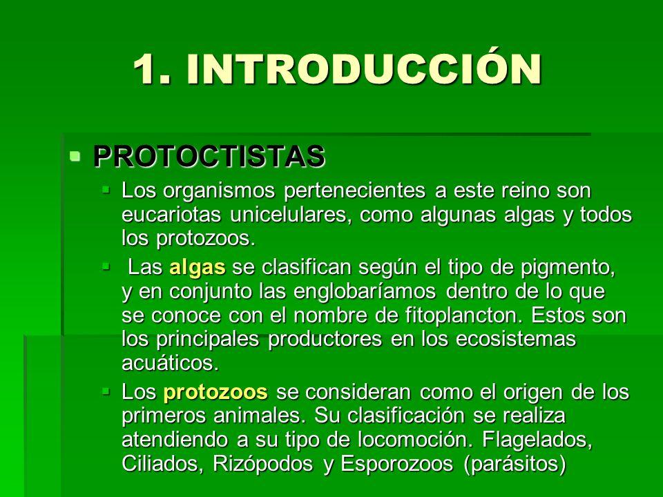 1. INTRODUCCIÓN PROTOCTISTAS