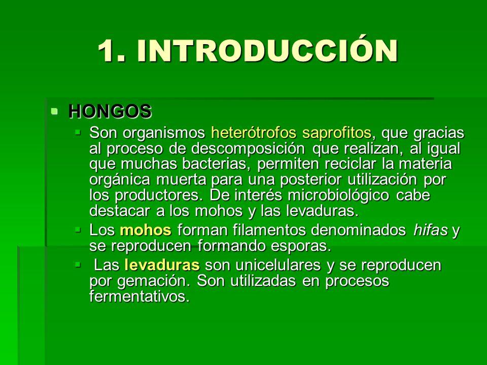 1. INTRODUCCIÓNHONGOS.