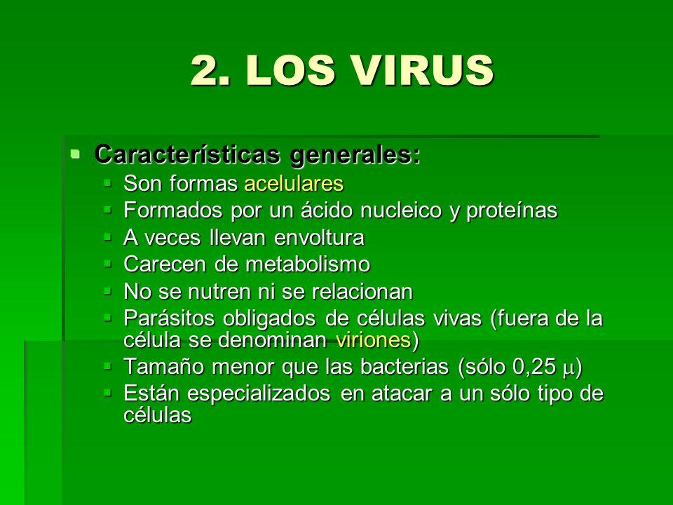 2. LOS VIRUS Características generales: Son formas acelulares