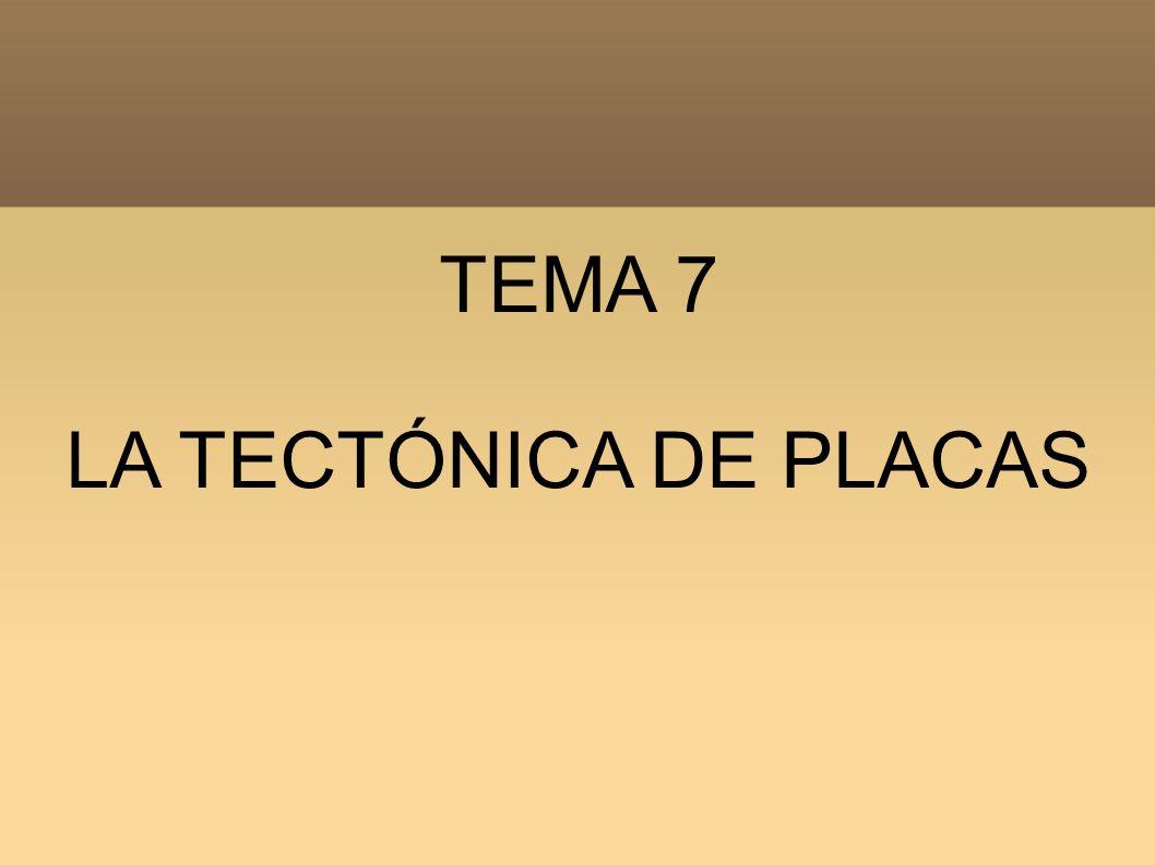 TEMA 7 LA TECTÓNICA DE PLACAS