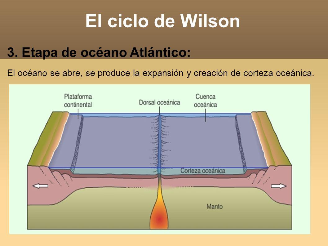 El ciclo de Wilson 3. Etapa de océano Atlántico: