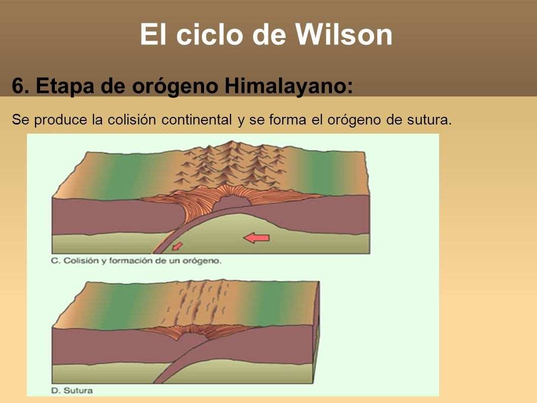 El ciclo de Wilson 6. Etapa de orógeno Himalayano: