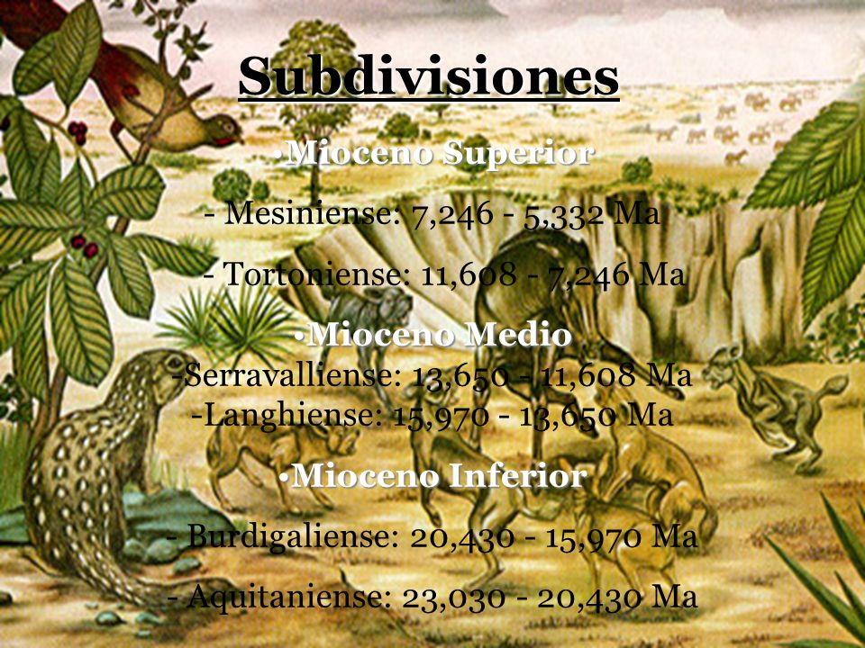 Subdivisiones Mioceno Superior - Mesiniense: 7,246 - 5,332 Ma