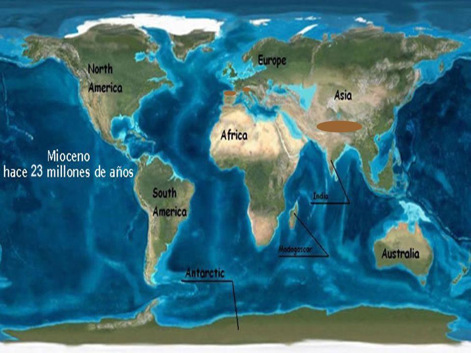 Paleogeografía MIOCENO