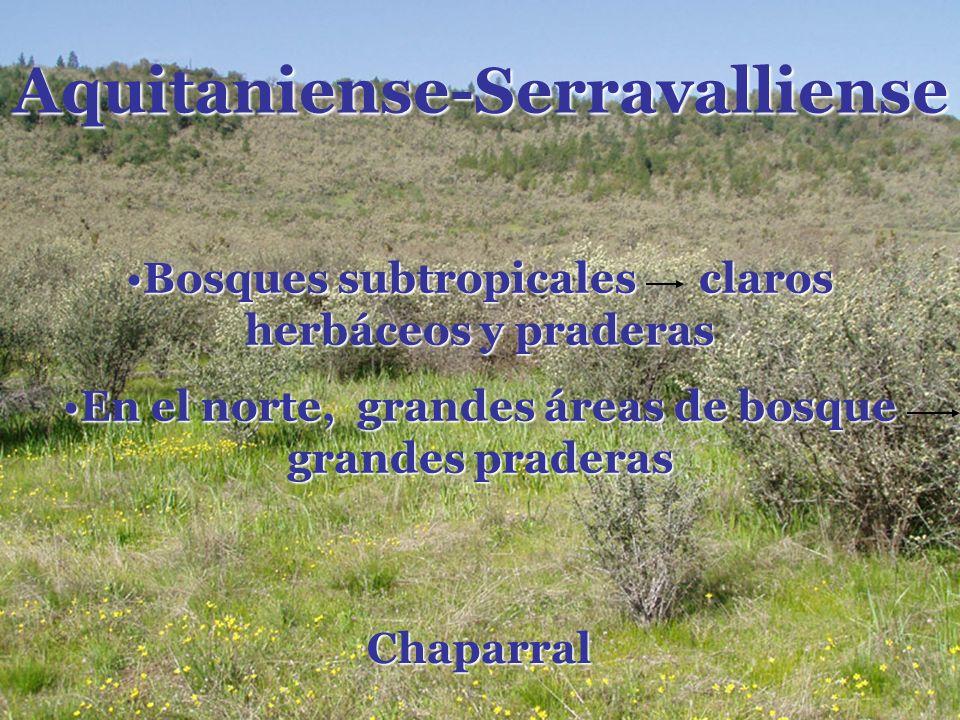Aquitaniense-Serravalliense
