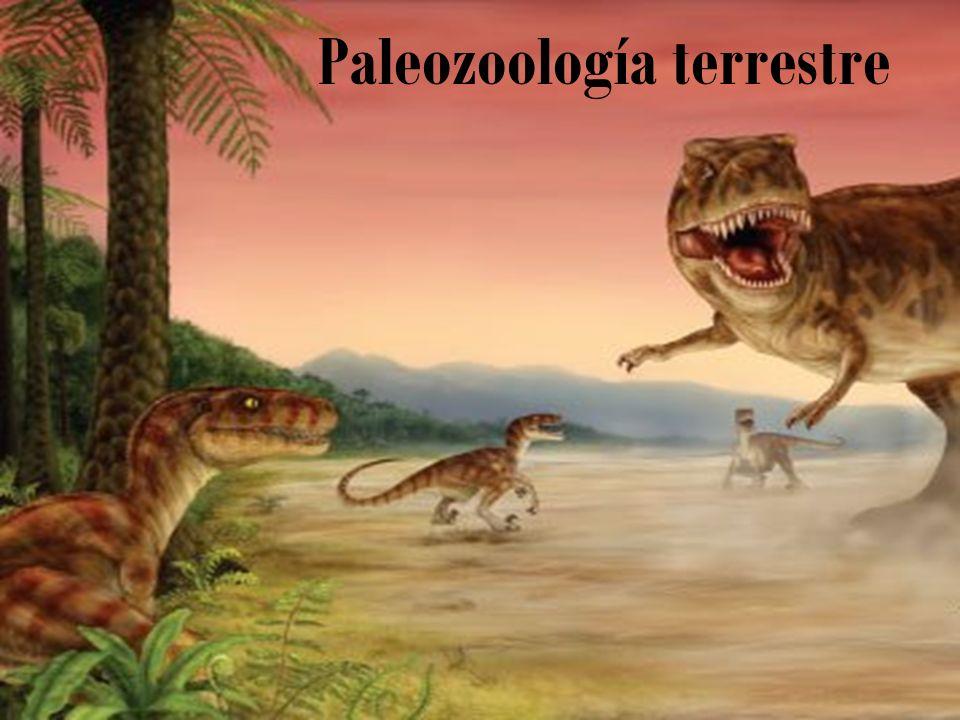Paleozoología terrestre