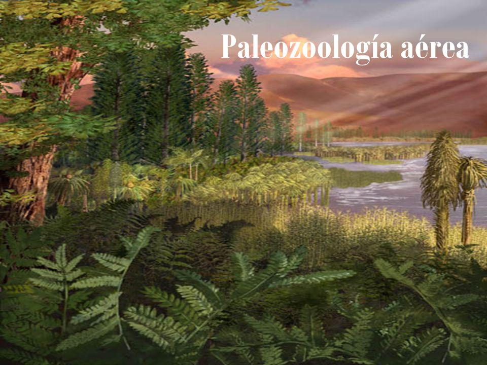 Paleozoología aérea