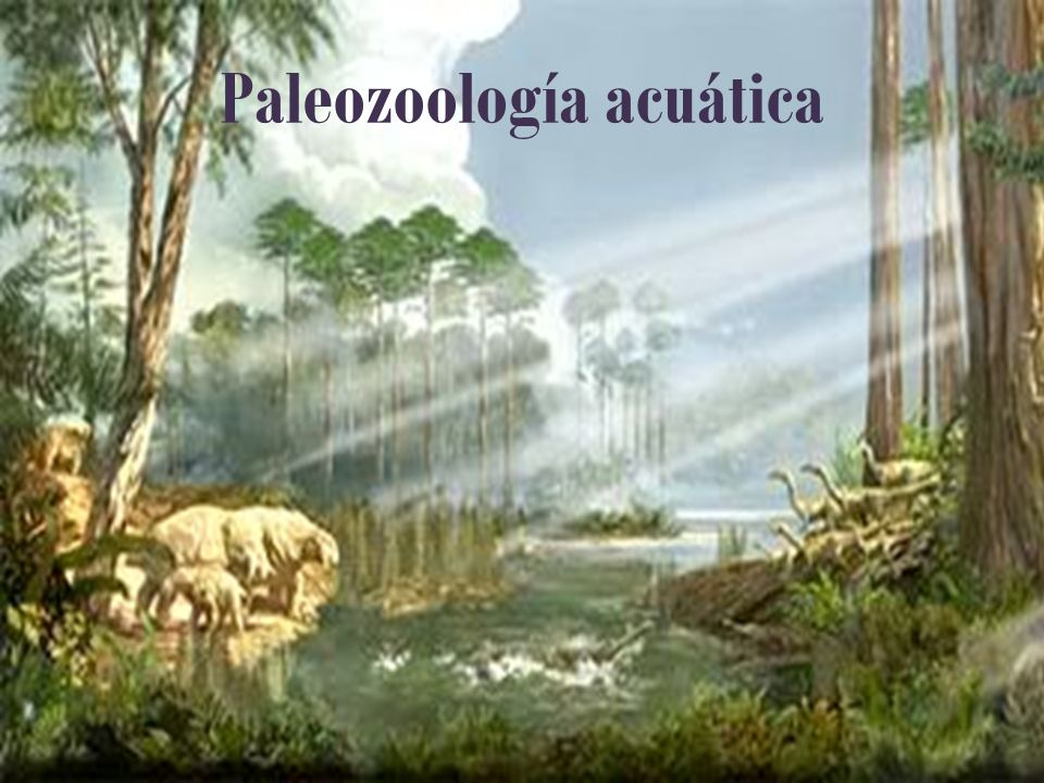 Paleozoología acuática