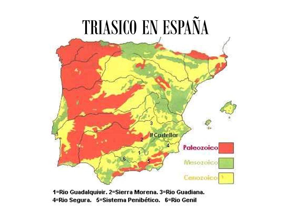 TRIASICO EN ESPAÑA