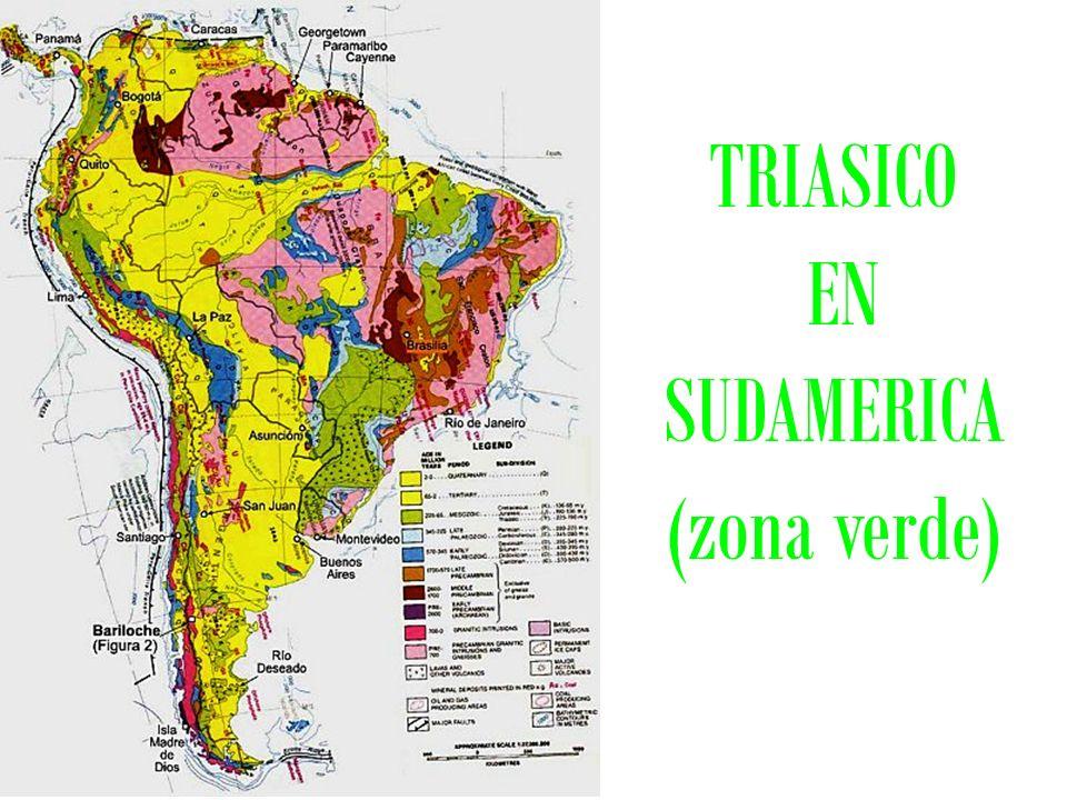 TRIASICO EN SUDAMERICA (zona verde)