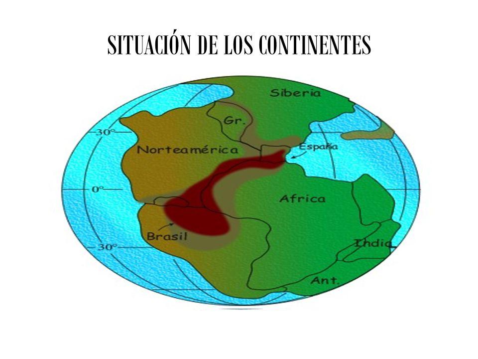 SITUACIÓN DE LOS CONTINENTES