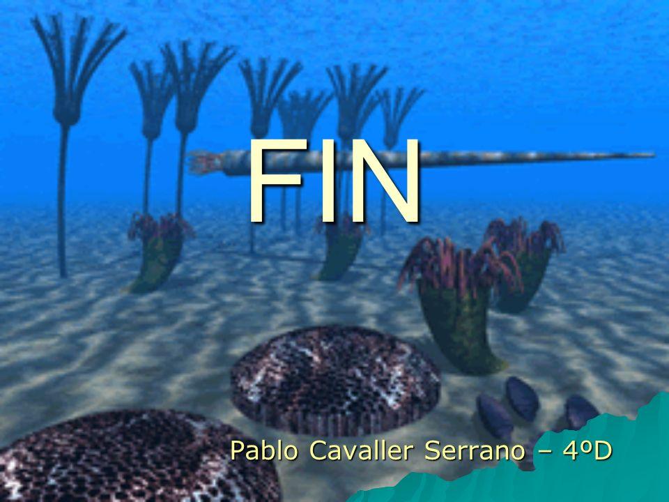Pablo Cavaller Serrano – 4ºD