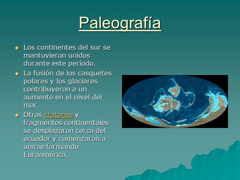 Paleografía Los continentes del sur se mantuvieron unidos durante este período.