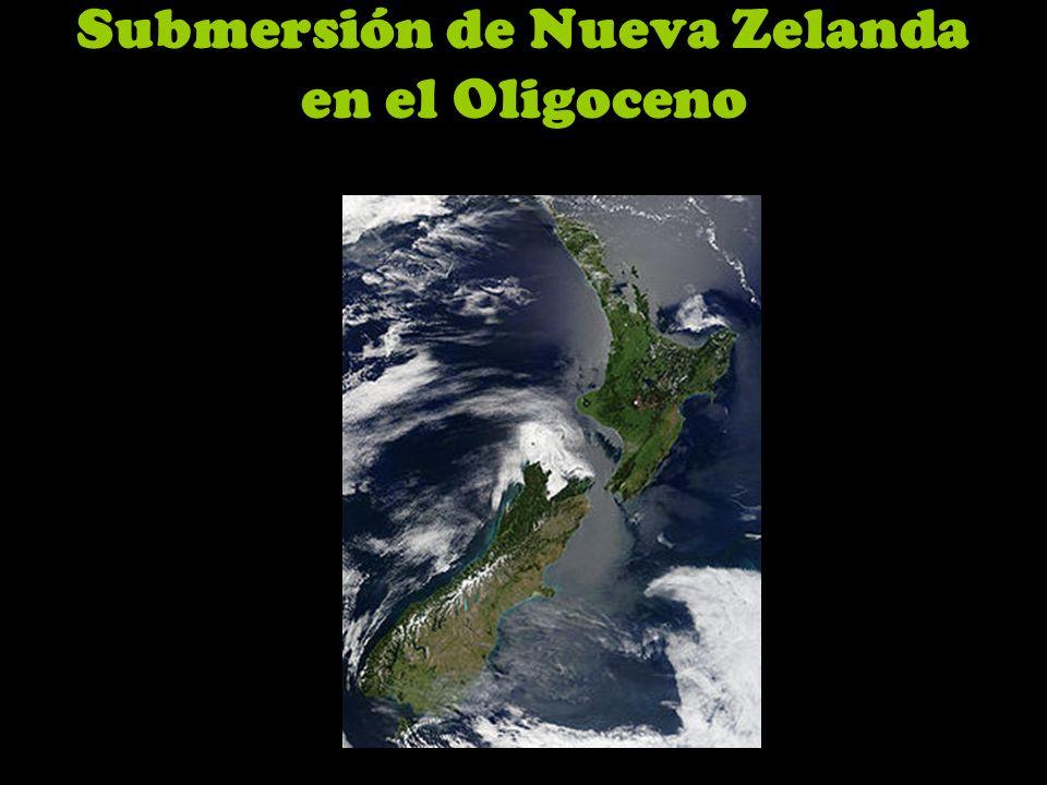 Submersión de Nueva Zelanda en el Oligoceno