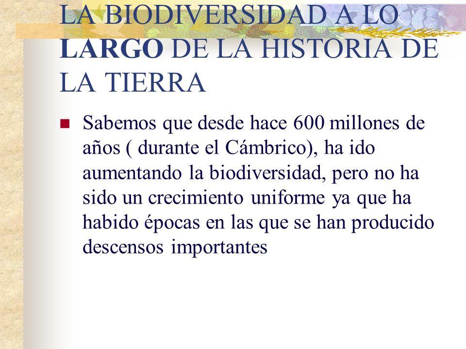 LA BIODIVERSIDAD A LO LARGO DE LA HISTORIA DE LA TIERRA