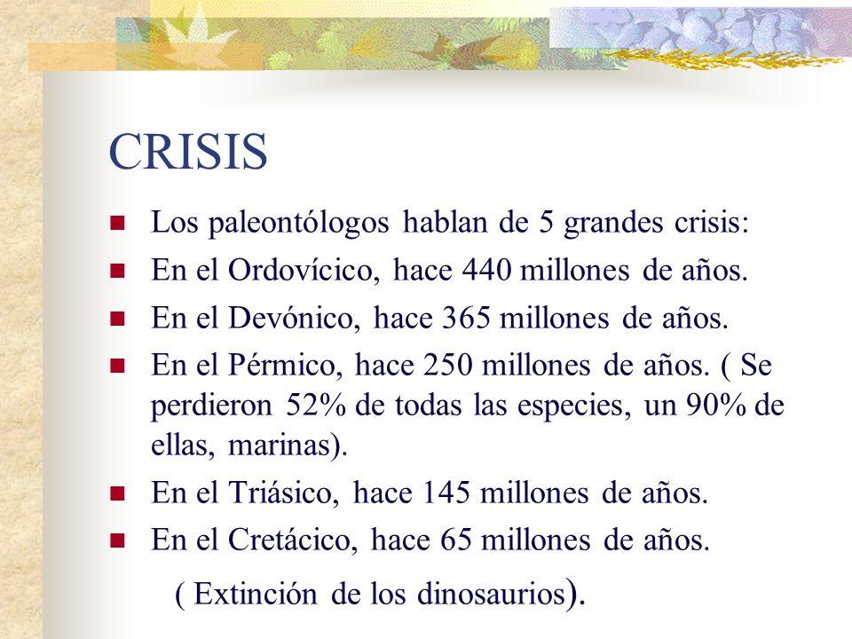CRISIS Los paleontólogos hablan de 5 grandes crisis: