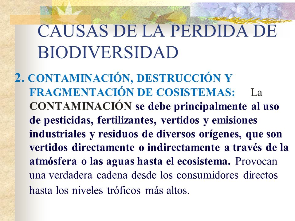 CAUSAS DE LA PERDIDA DE BIODIVERSIDAD