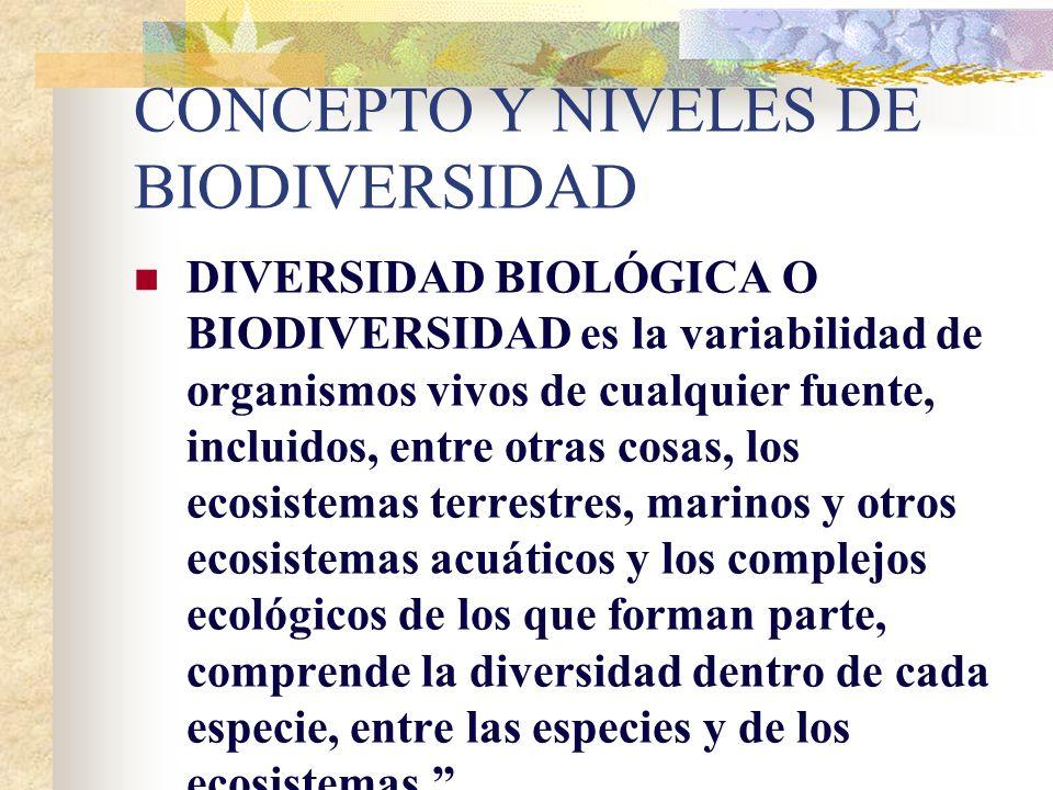 CONCEPTO Y NIVELES DE BIODIVERSIDAD