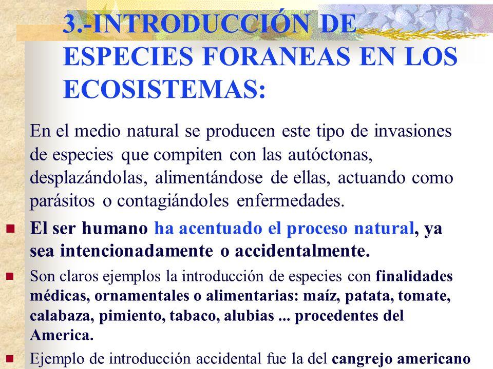3.-INTRODUCCIÓN DE ESPECIES FORANEAS EN LOS ECOSISTEMAS: