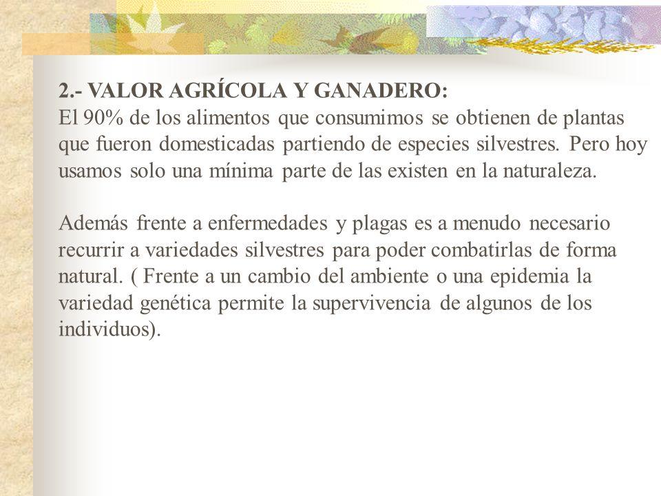 2.- VALOR AGRÍCOLA Y GANADERO:
