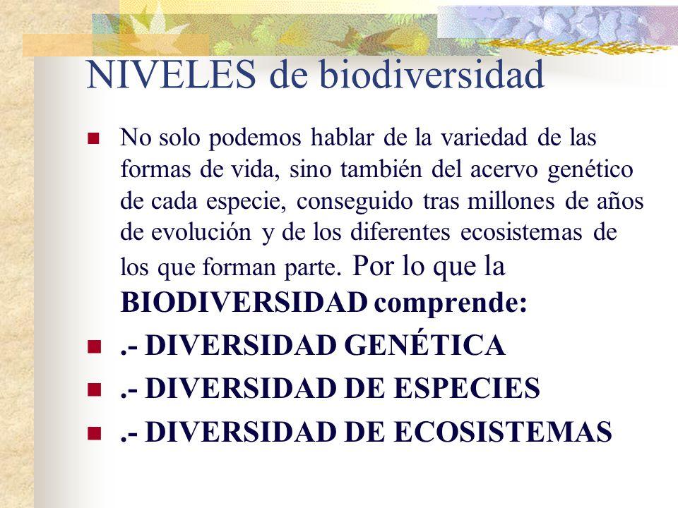 NIVELES de biodiversidad