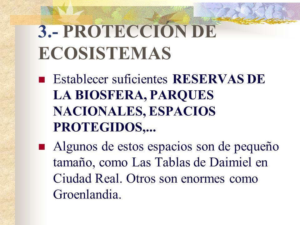 3.- PROTECCIÓN DE ECOSISTEMAS