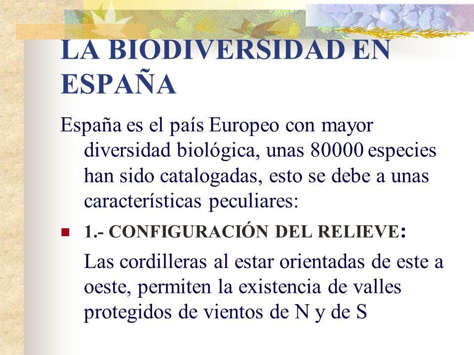 LA BIODIVERSIDAD EN ESPAÑA