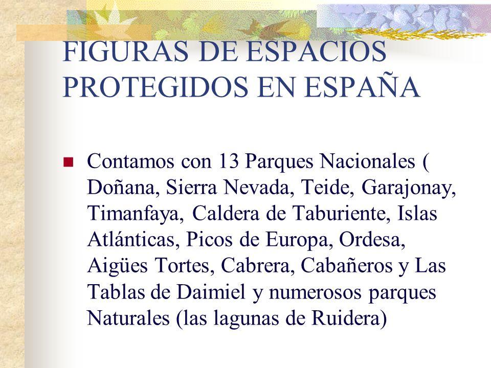 FIGURAS DE ESPACIOS PROTEGIDOS EN ESPAÑA