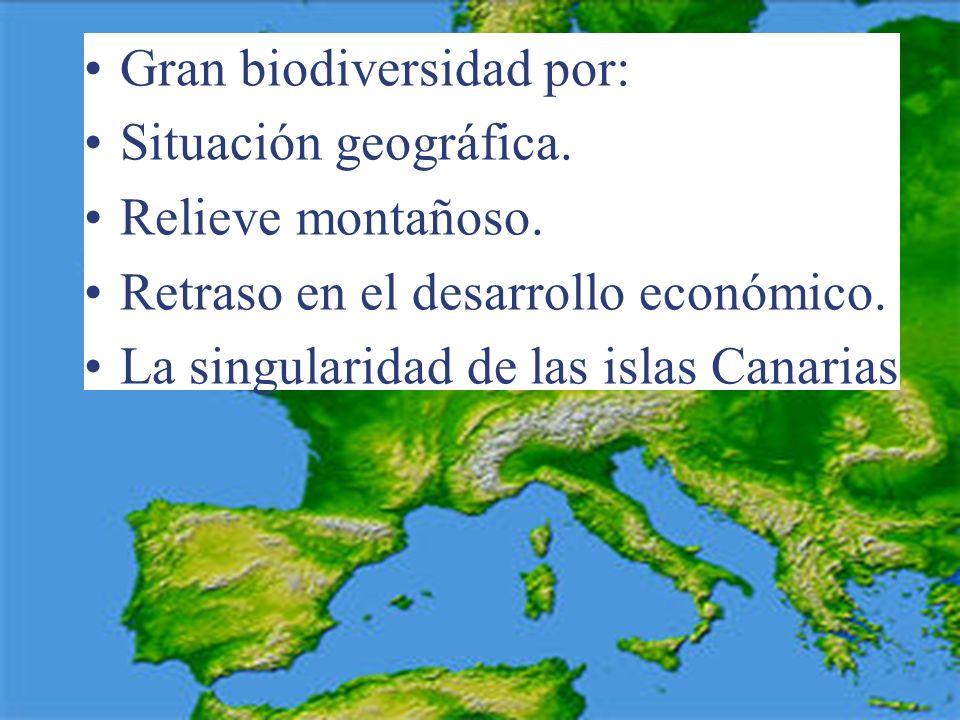 Gran biodiversidad por: