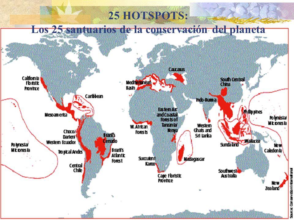 Los 25 santuarios de la conservación del planeta