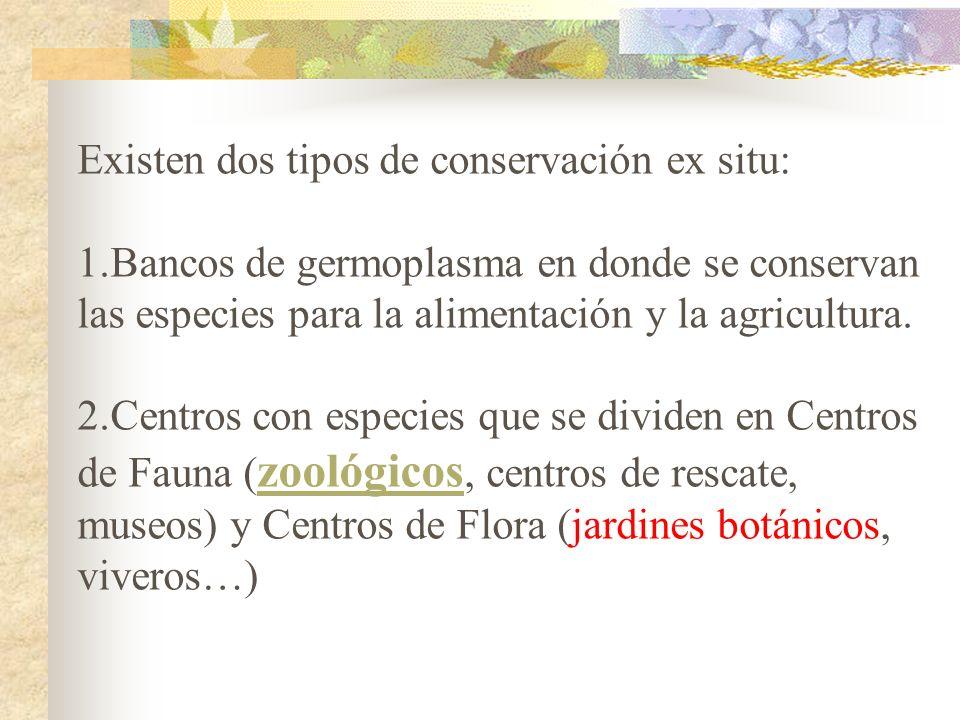 Existen dos tipos de conservación ex situ: