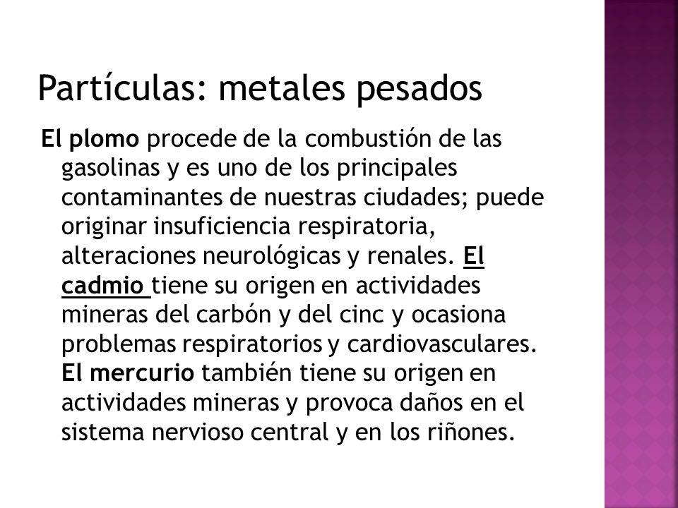 Partículas: metales pesados