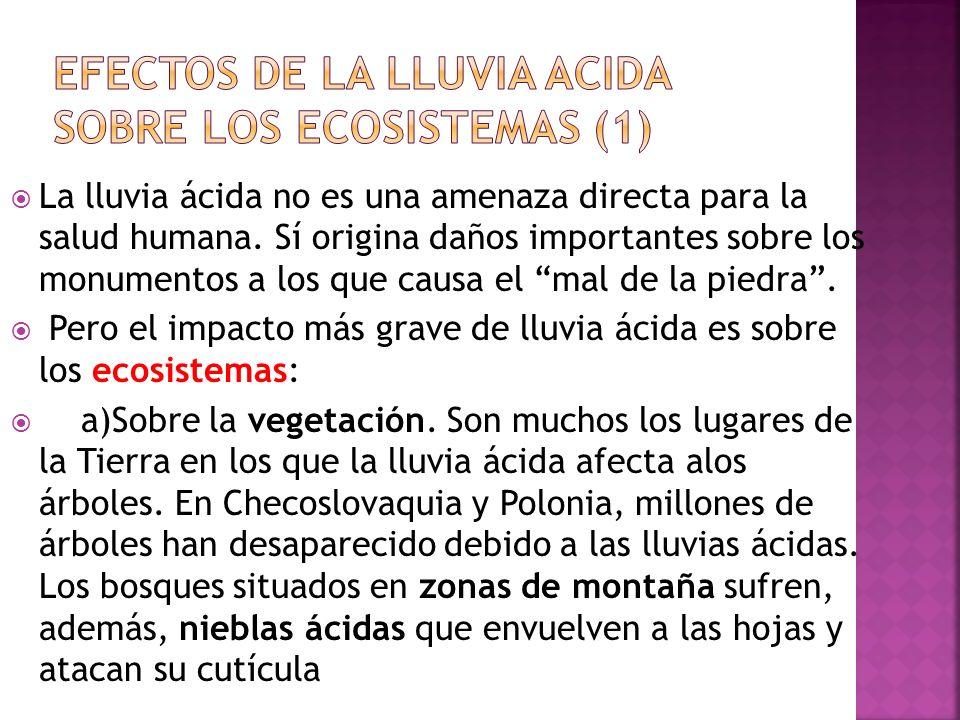 efectos de la lluvia acida sobre los ecosistemas (1)