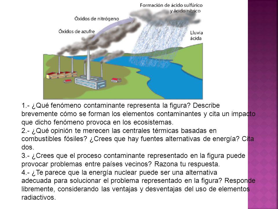 1. - ¿Qué fenómeno contaminante representa la figura
