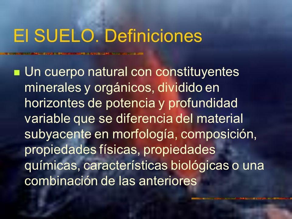 El SUELO. Definiciones