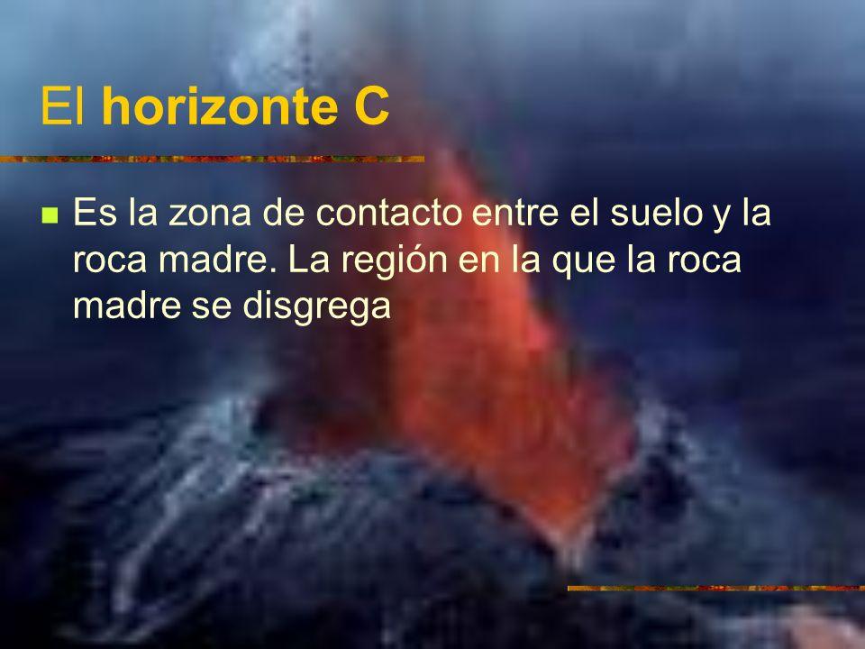 El horizonte C Es la zona de contacto entre el suelo y la roca madre.