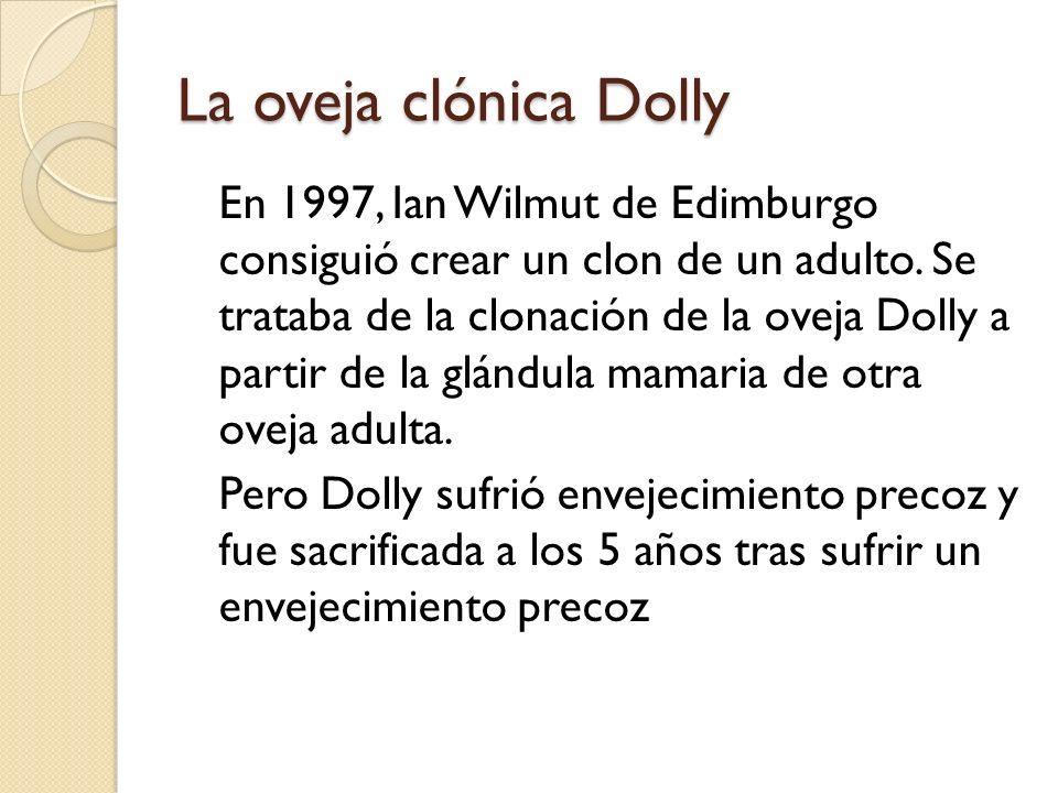 La oveja clónica Dolly