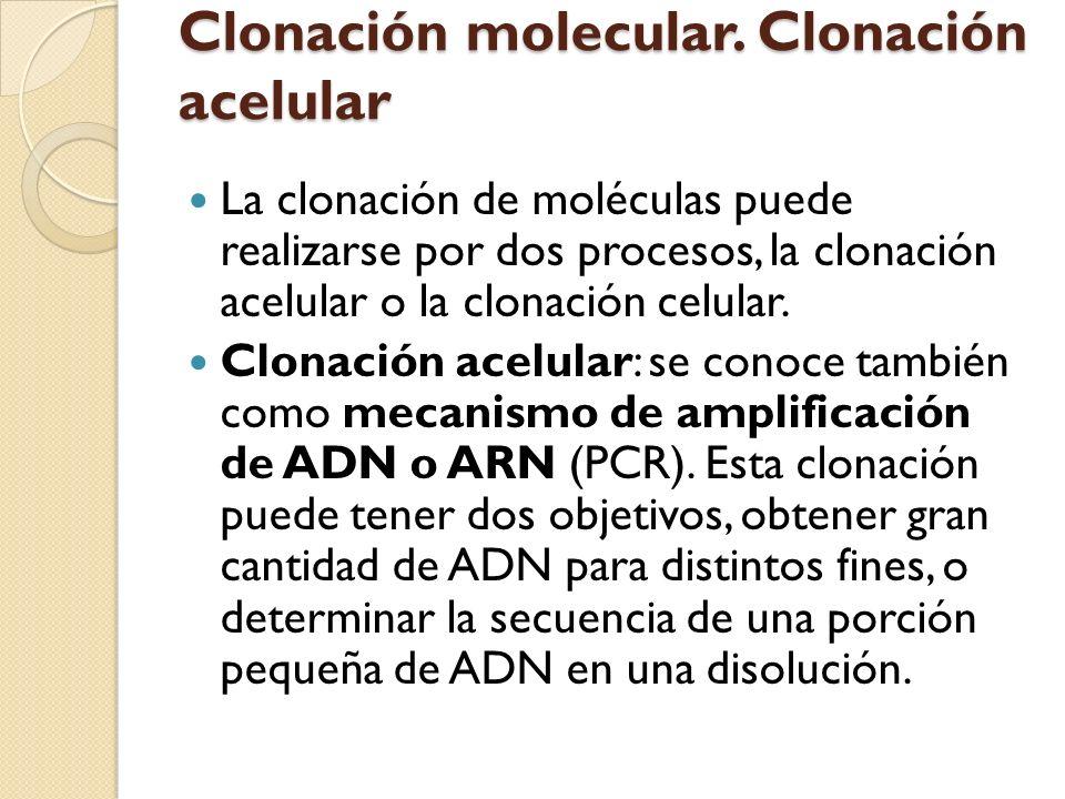 Clonación molecular. Clonación acelular
