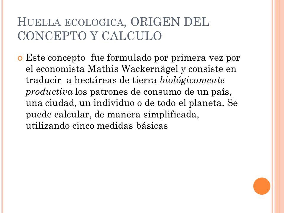 Huella ecologica, ORIGEN DEL CONCEPTO Y CALCULO